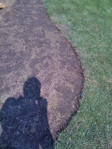 this shallow depth is fine for new lawn.  deeper on older lawns is fine, because thatch is established.