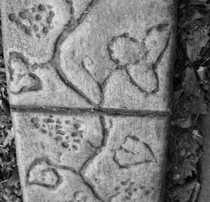 Grapevine stamp