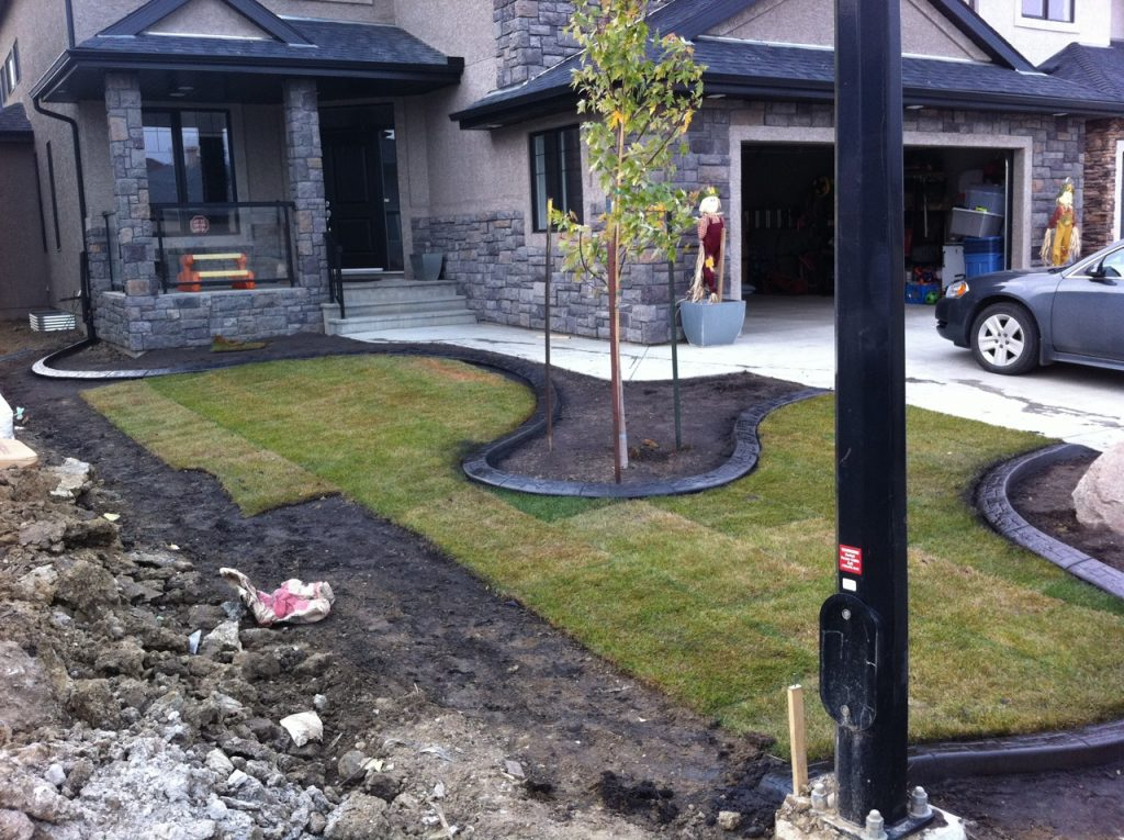 interesting front yard design